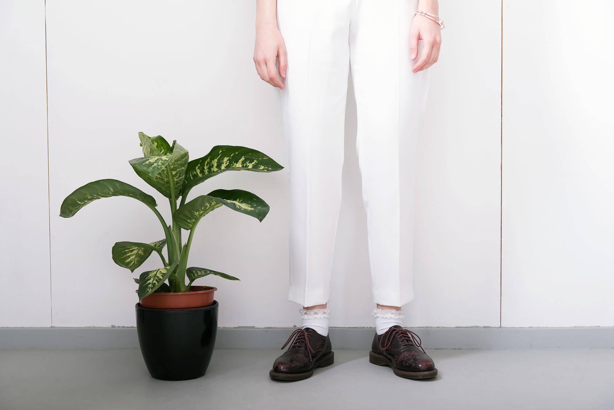 Down To Earth benen en plant